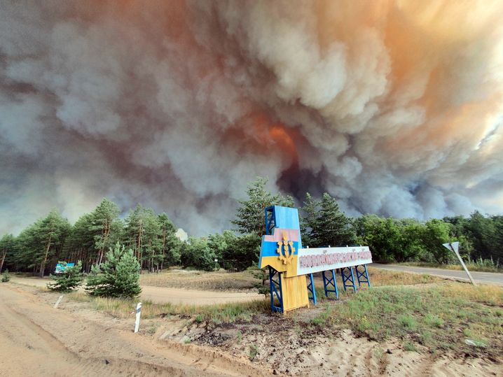Ukraine was hit by several severe forest fires in 2020, like this one near Luhansk.