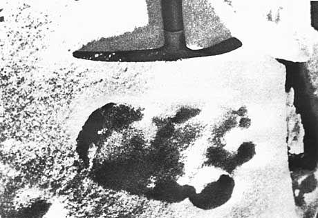 Fußabdruck vom Yeti: Trieb ein Bär Schabernack mit Messner?