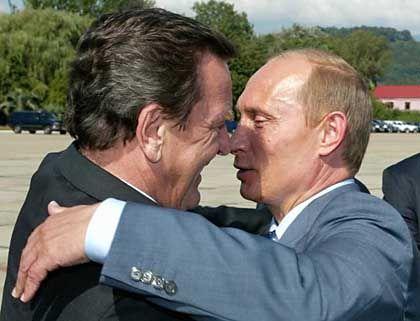 Duzfreunde: Gerhard Schröder (li) und Wladimir Putin