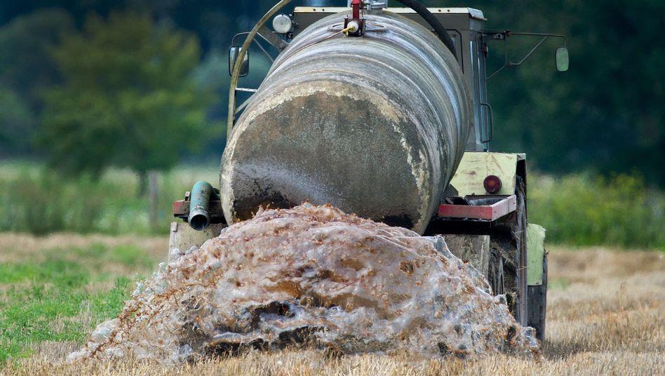 Ein Bauer beim Ausbringen von Gülle auf einem Feld im Oderbruch (Archiv)