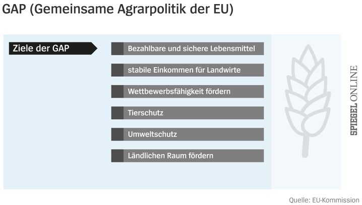 Subventionen: So funktioniert die EU-Agrarpolitik