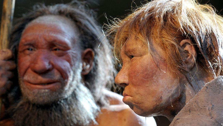 Nahe Verwandte des modernen Menschen: Nachbildungen einer Neandertalerin (r.) und eines Neandertalers im Neanderthal Museum in Mettmann