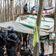 Polizei beginnt mit Räumung von Dannenröder Forst