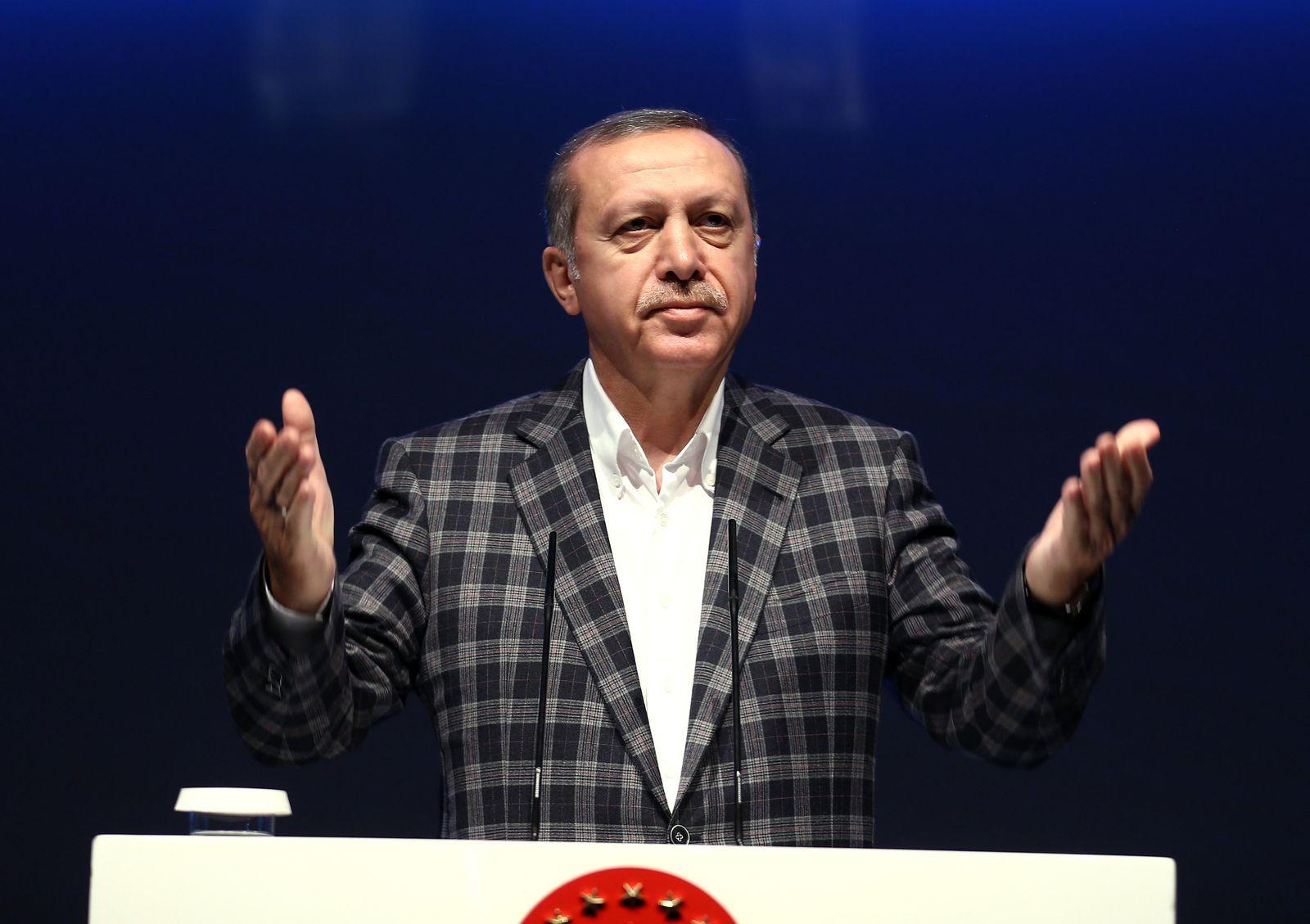 Türkei/ Erdogan