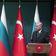 Erdoğans Komplizen