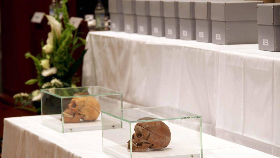 Zwei Schädel aus dem früheren Deutsch-Südwest-Afrika bei einer Rückgabe in Berlin (2011)
