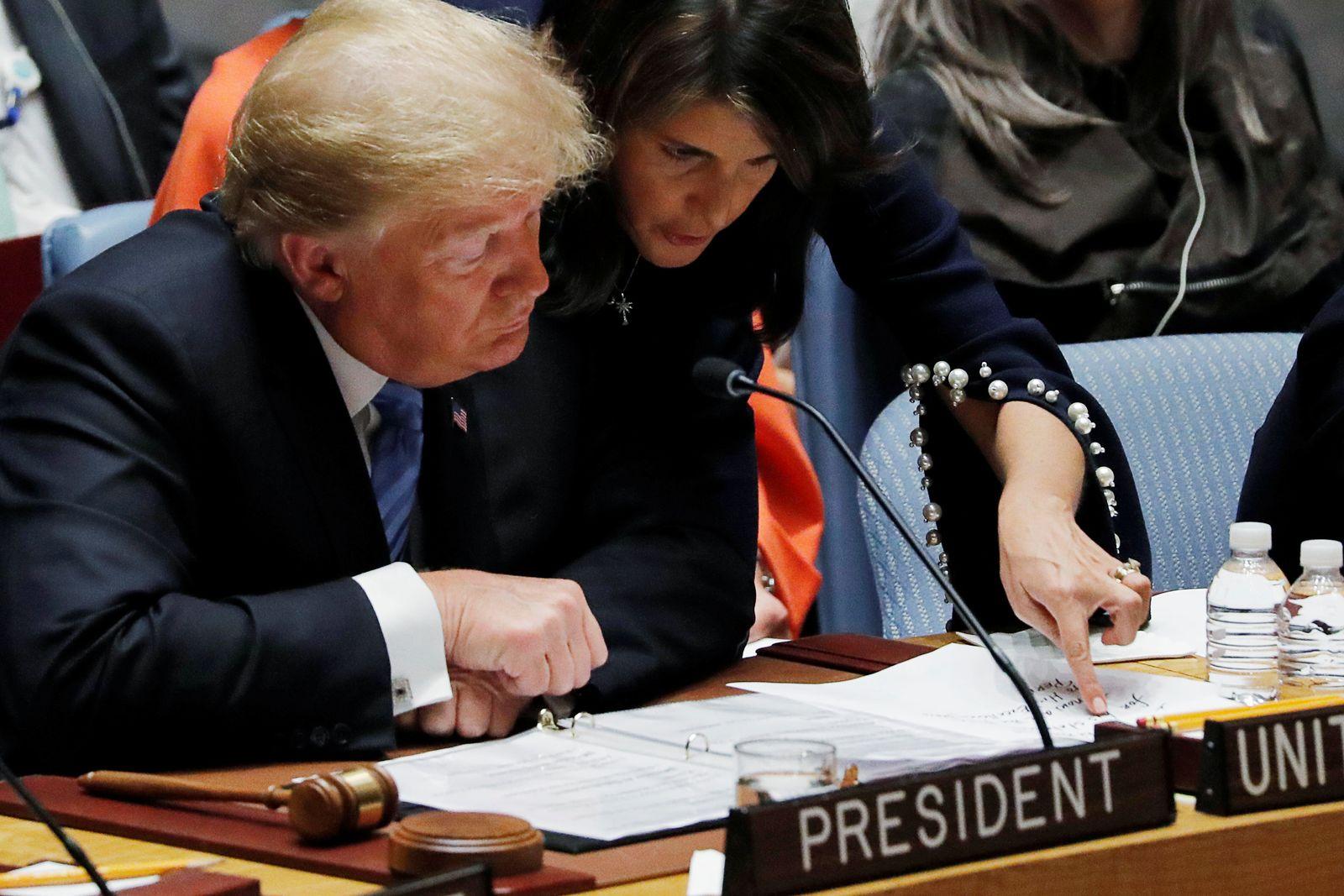 Nikki Haley Donald Trump