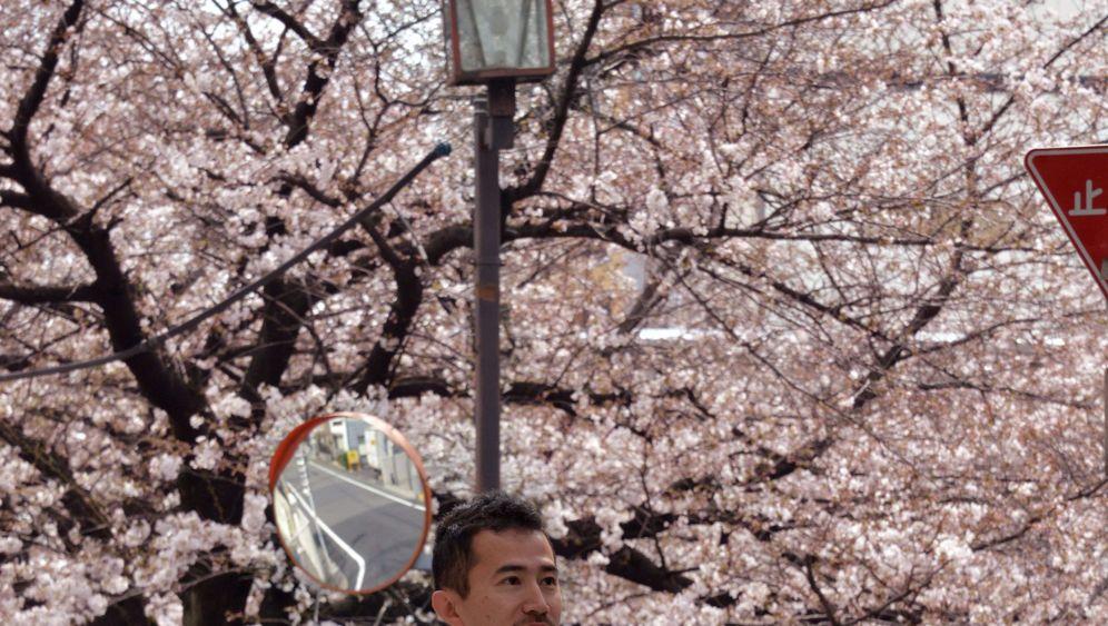 Kirschblüte in Tokio: Ein Schlückchen Sake für die Sakura