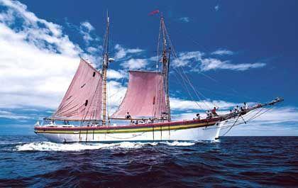 Ob Riff, ob Schiff: Ein Plätzchen zum Heiraten findet sich überall auf und um Mauritius