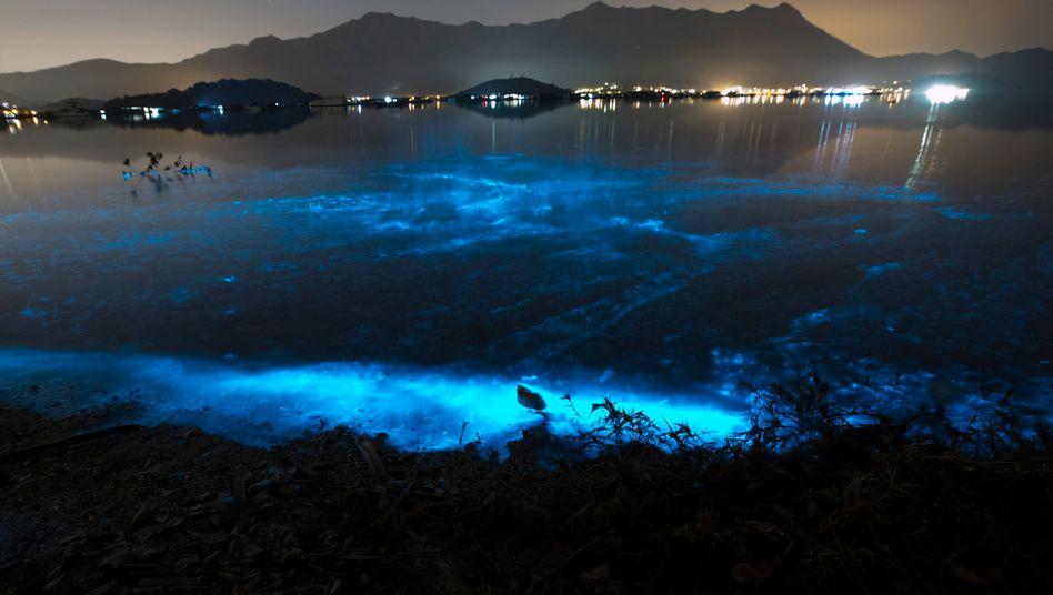 Blau schimmerndes Meer nahe Hongkong
