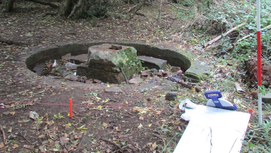 Tempelreste in Norfolk: Spuren einer Geheimgesellschaft