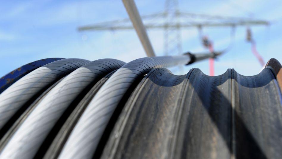 Bauarbeiten an Stromtrasse in Rheinland-Pfalz: Hohe Preise politisch erwünscht