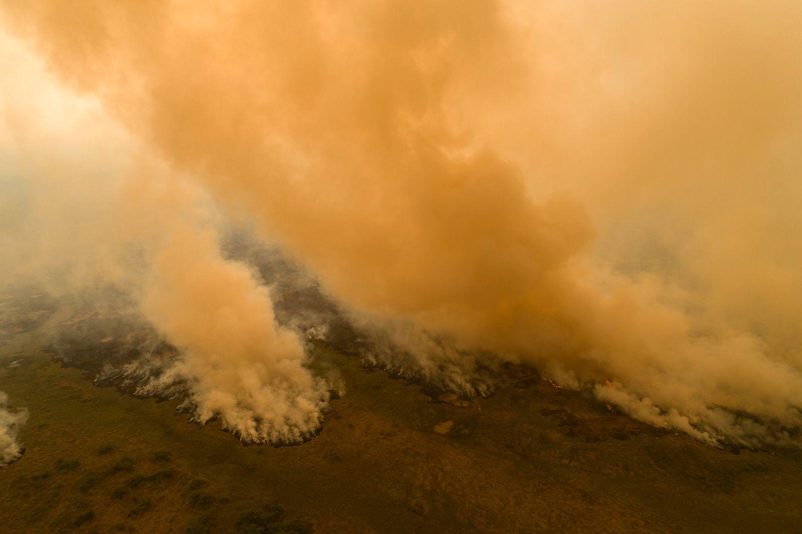 Brazil Pantanal Wildfires