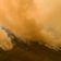 Zahl der Waldbrände im Amazonas-Regenwald stark gestiegen