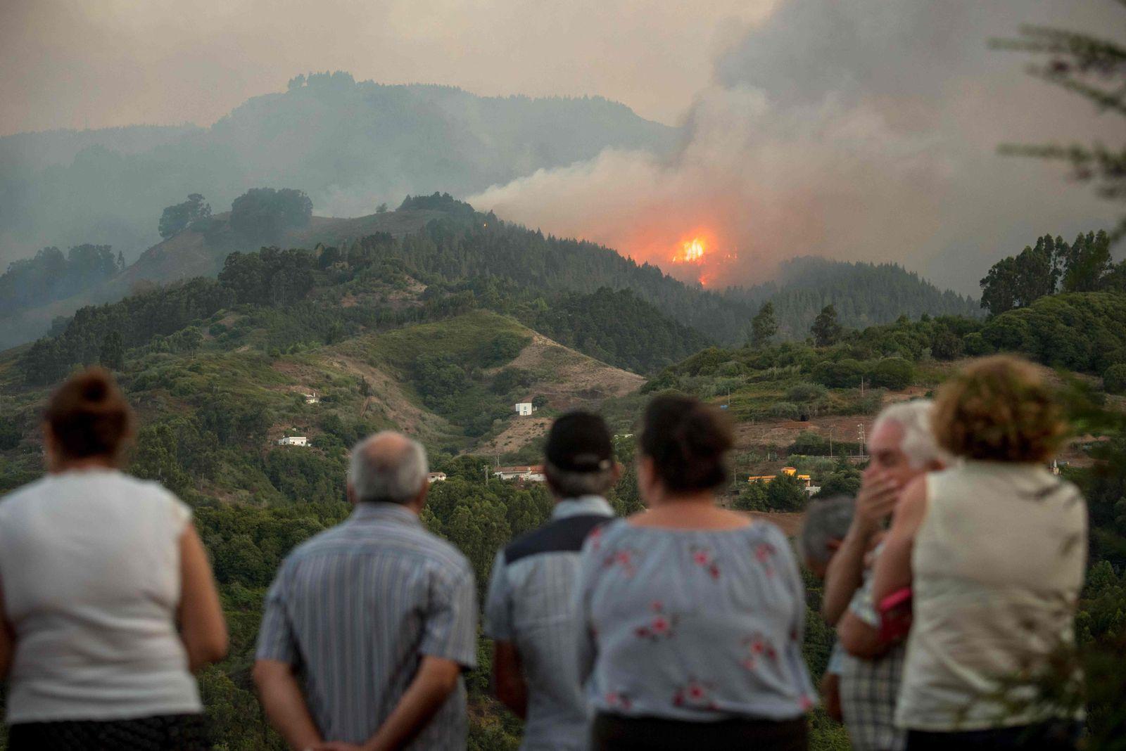 Gran Canaria Waldbrand