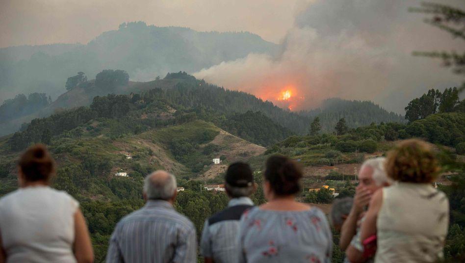 Flammen und Rauch in den Bergen von Gran Canaria