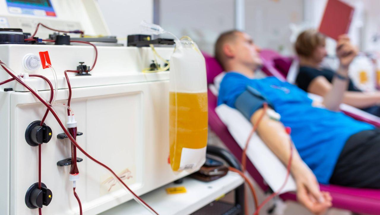 Covid-19: Zwei Patienten in Südkorea nach Blutplasma-Therapie erholt