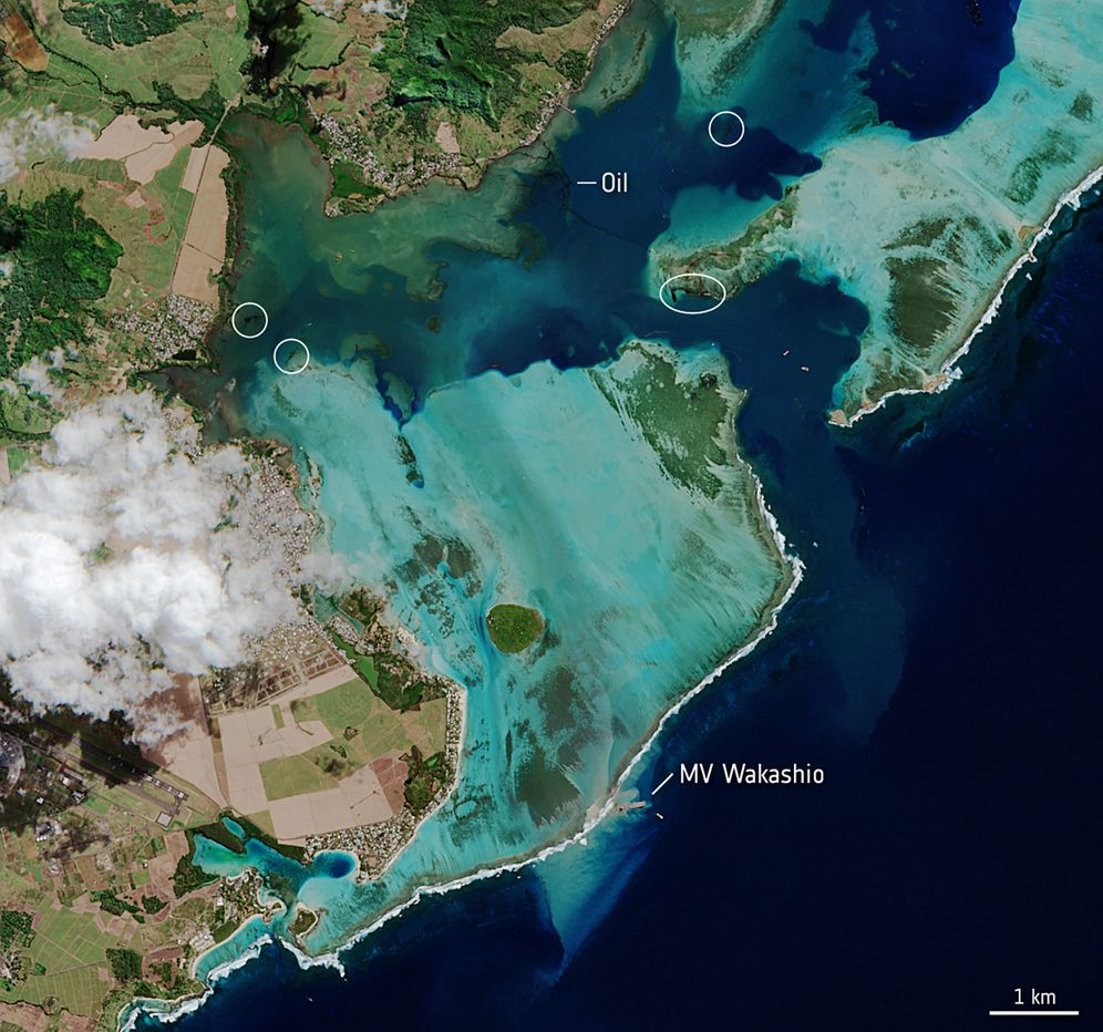 Unglücksort vor Mauritius: Öl in Lagunen gespült