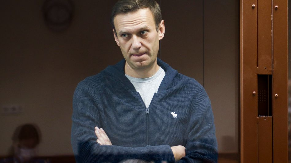 Alexej Nawalny: »38,1 Grad Fieber«