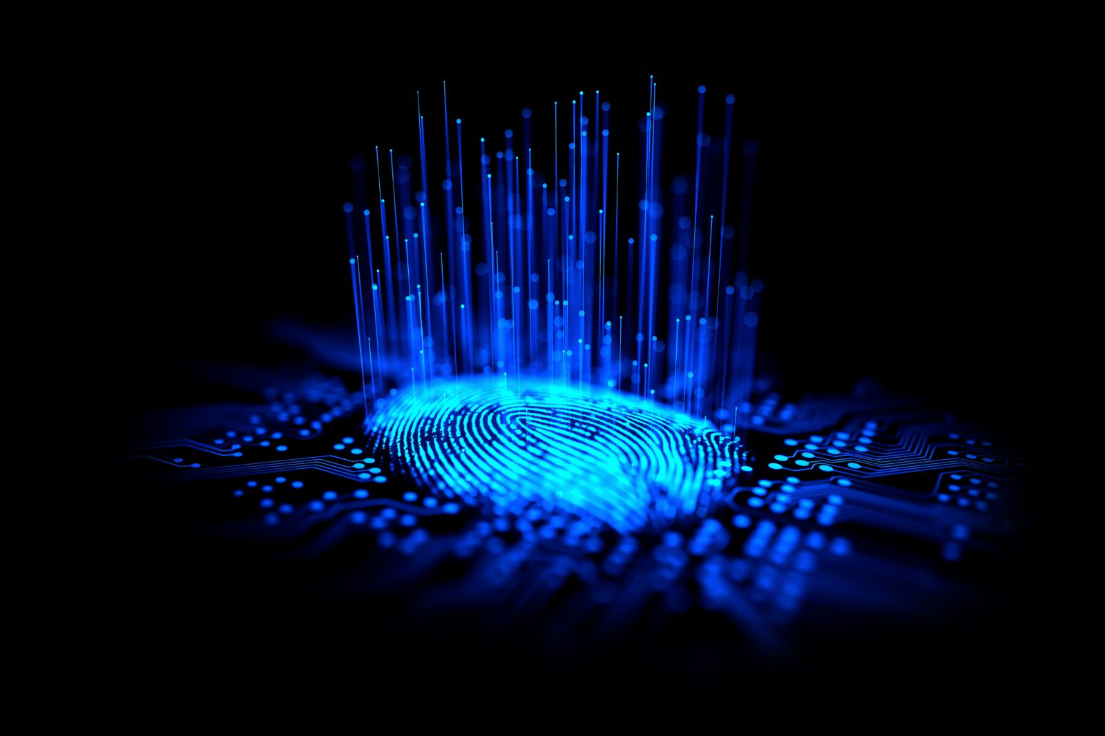 Digital fingerprint, conceptual illustration