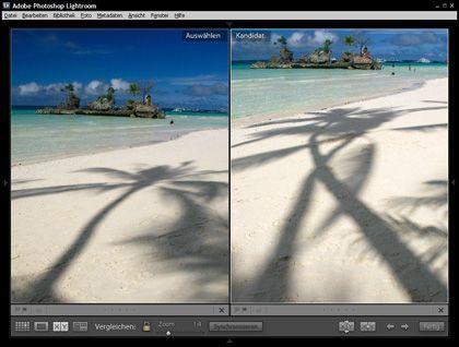"""Digitales Leuchtpult: Bilddatenbanken zeigen Ihre Fotoschätze übersichtlich an, hier der """"Organizer"""" aus Photoshop Lightroom"""