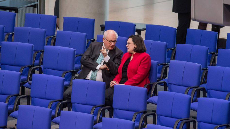 Volker Kauder, Andrea Nahles
