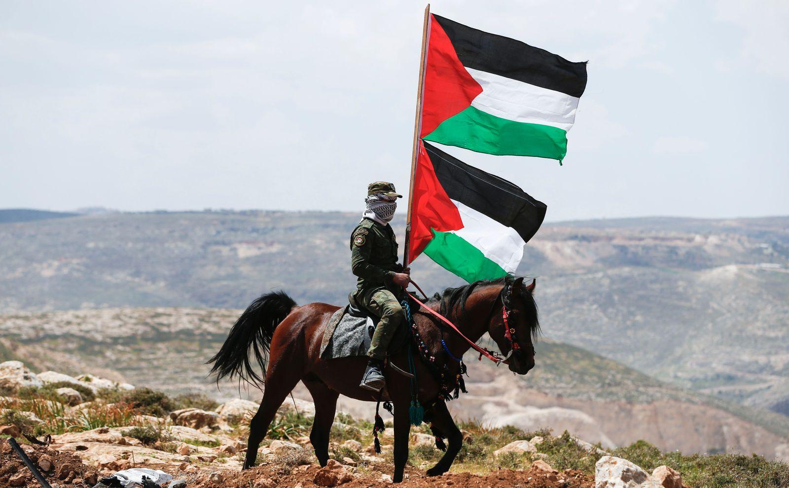 Palästina/BDS