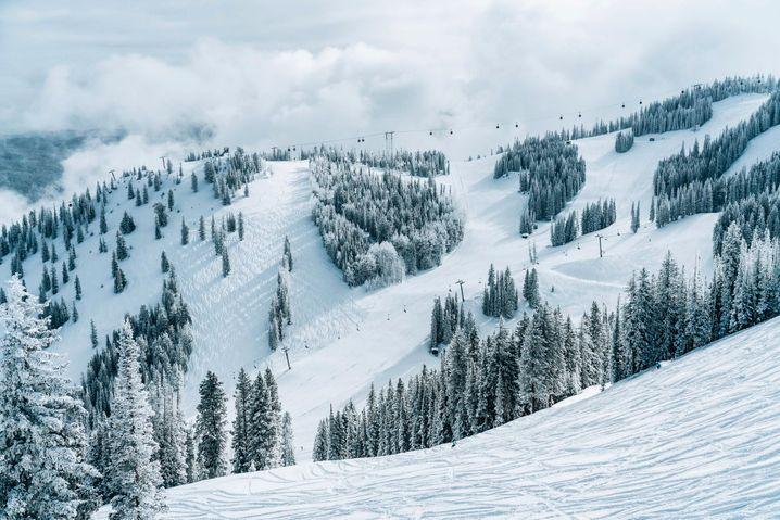Aspen in Colorado: Champagner-Schnee lockt Wintersportler von weit her an
