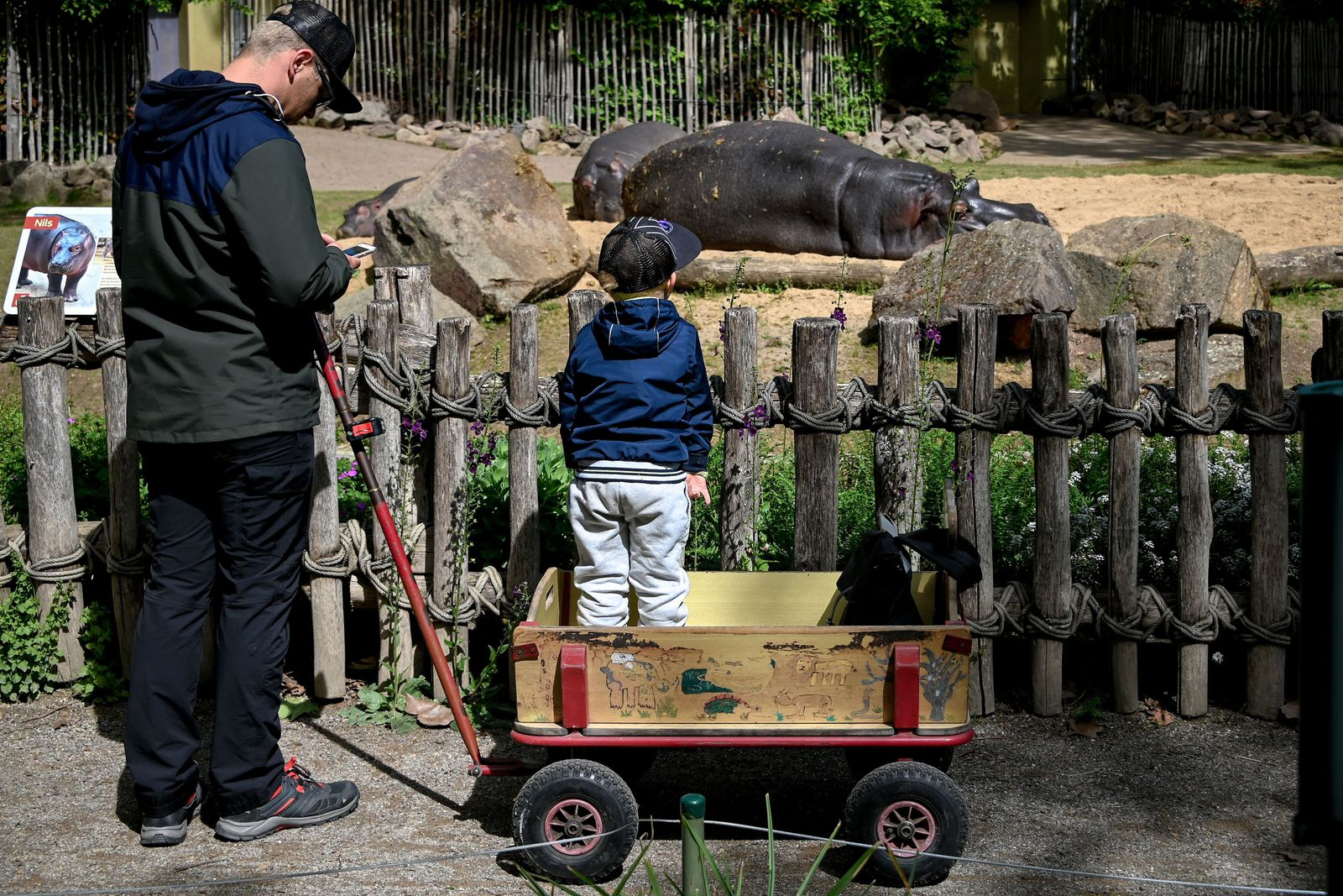 Cologne Zoo reopens after easing coronavirus lockdown, Germany - 05 May 2020