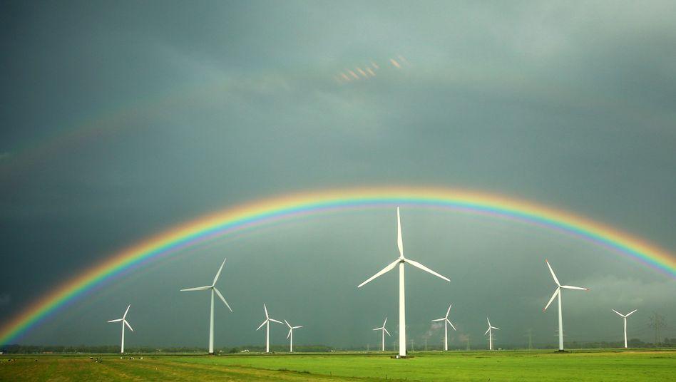 """Windkraftanlagen: """"Dringender Anpassungsbedarf"""" bei Ökostrom-Abgabe"""