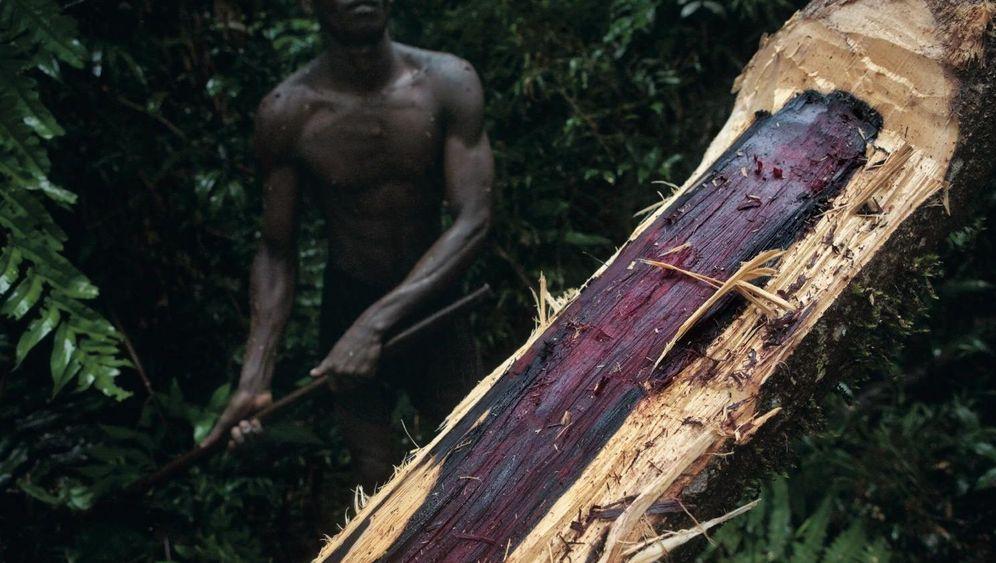 Alles auf Rot: Das Madagaskar-Dilemma