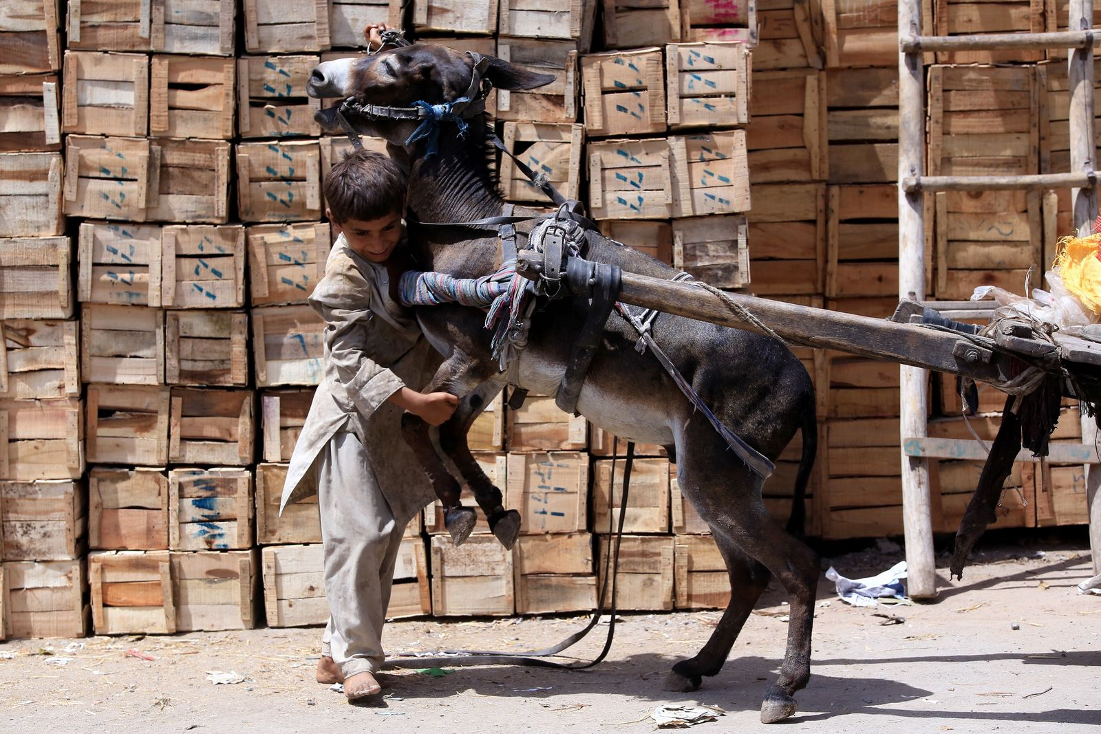 World Day Against Child Labor in Pakistan