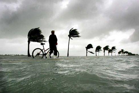 """Hurrikan in Florida: """"Das Thema Klimawandel oben auf die Agenda zu setzen"""""""