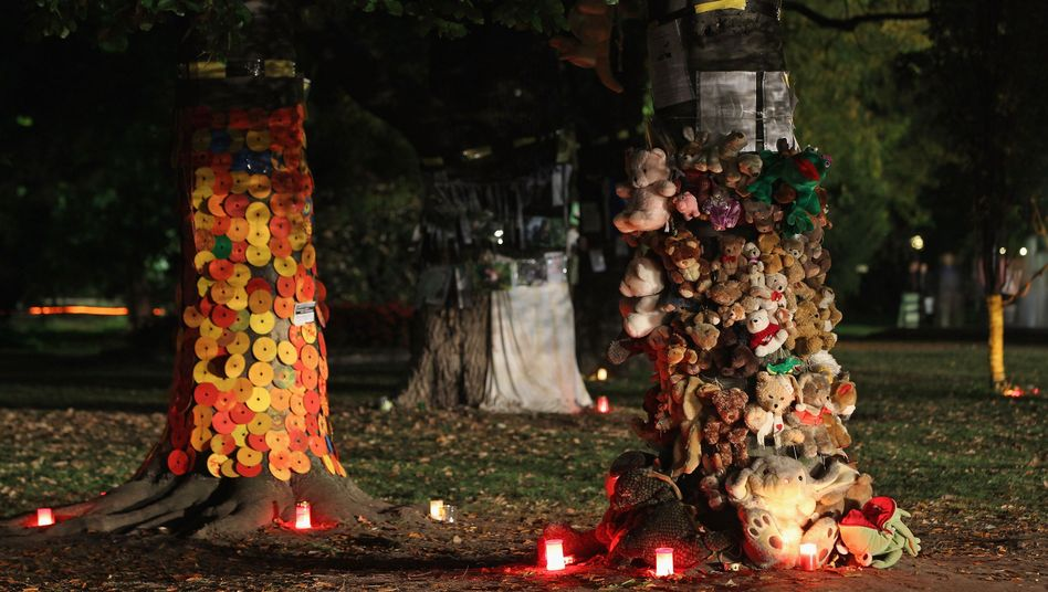 Some of the trees slated for removal have been decorated by opponents of the Stuttgart 21 project.