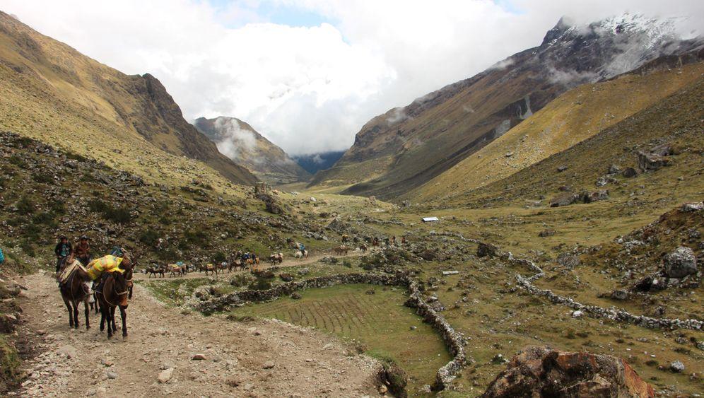 Salkantay-Trek statt Inka-Trail: Die anspruchsvolle Alternative