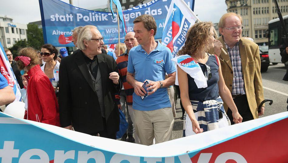 AfD-Aktion mit Spitzenkandidat Lucke in Hamburg (in Hellblau): Junge Partei, detaillierte Vorschriften