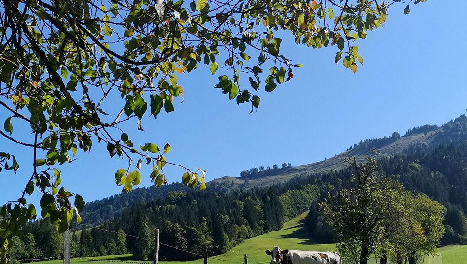 Zu Tausenden machen sich die Einwohner dieser kargen Bergwelt auf nach Deutschland