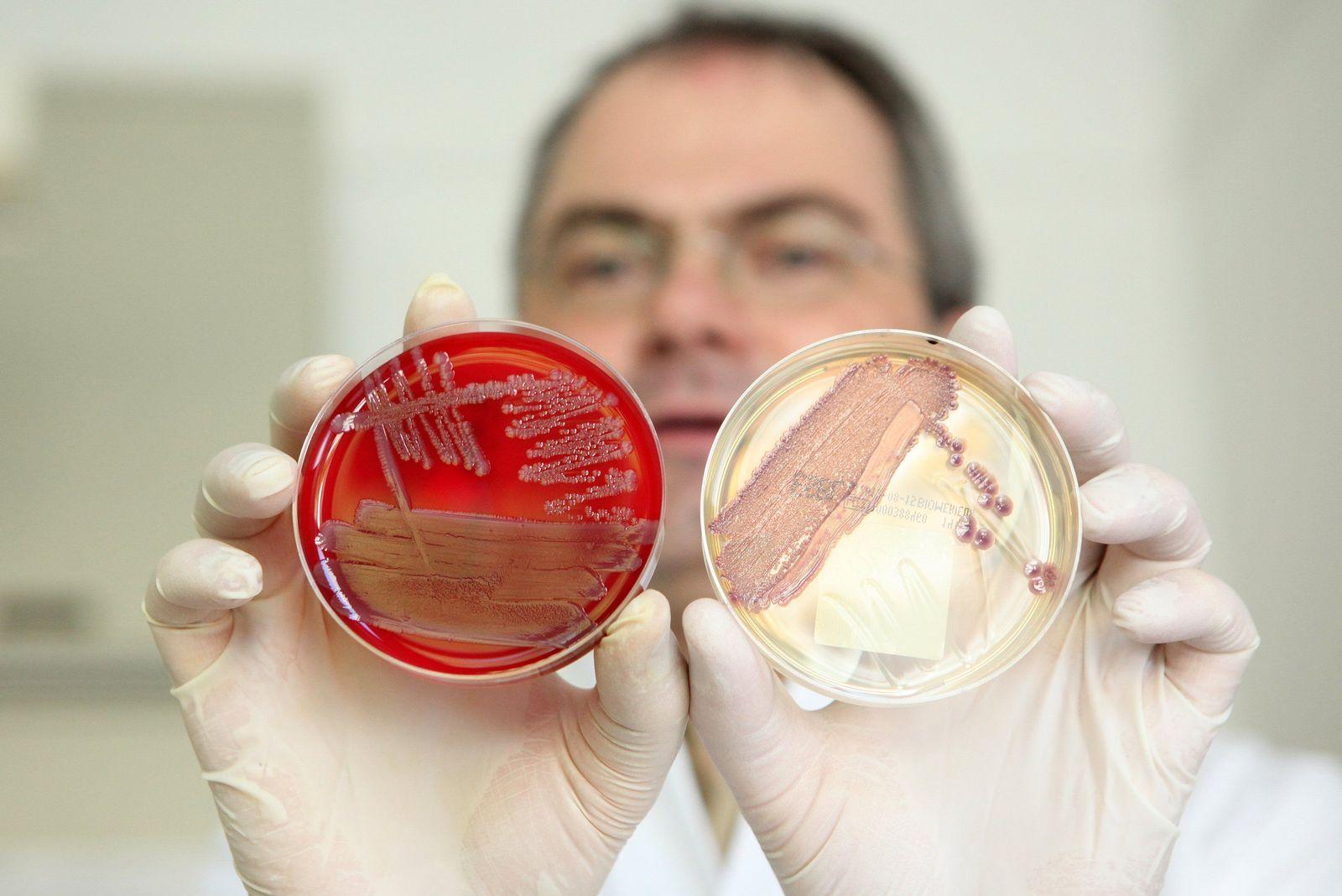 EHEC-Erkrankungen steigen weiter an