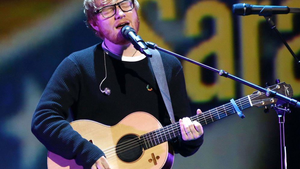 Ed Sheeran und Kater Graham: Katzenjammer