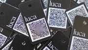 IT-Sicherheitsbehörde prüft Luca-App