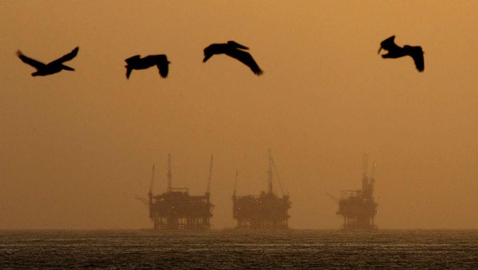 Golf von Mexiko: Kampf gegen Ölpest zieht sich hin