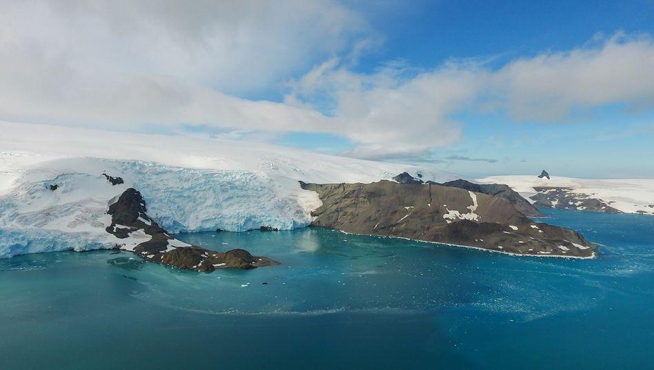 Gletscher aufKing George Island in der Antarktis