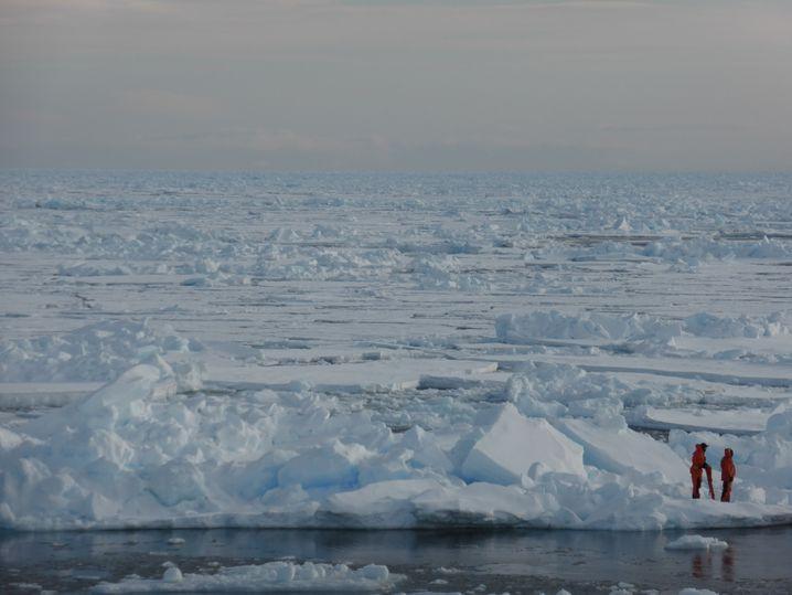 Forschende in der Arktis: Mit dem sommerlichen Meereis verschwindet ein gesamtes Ökosystem