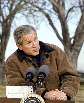 US-Präsident Bush: Beiträge nach dem Geschmack des Weißen Hauses