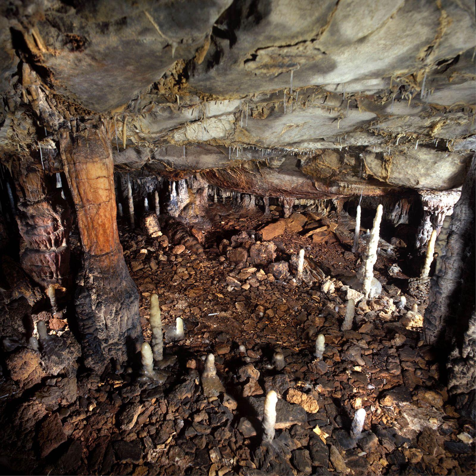 EINMALIGE VERWENDUNG Höhle in Spanien/ Höhlenlöwe ausgestorben