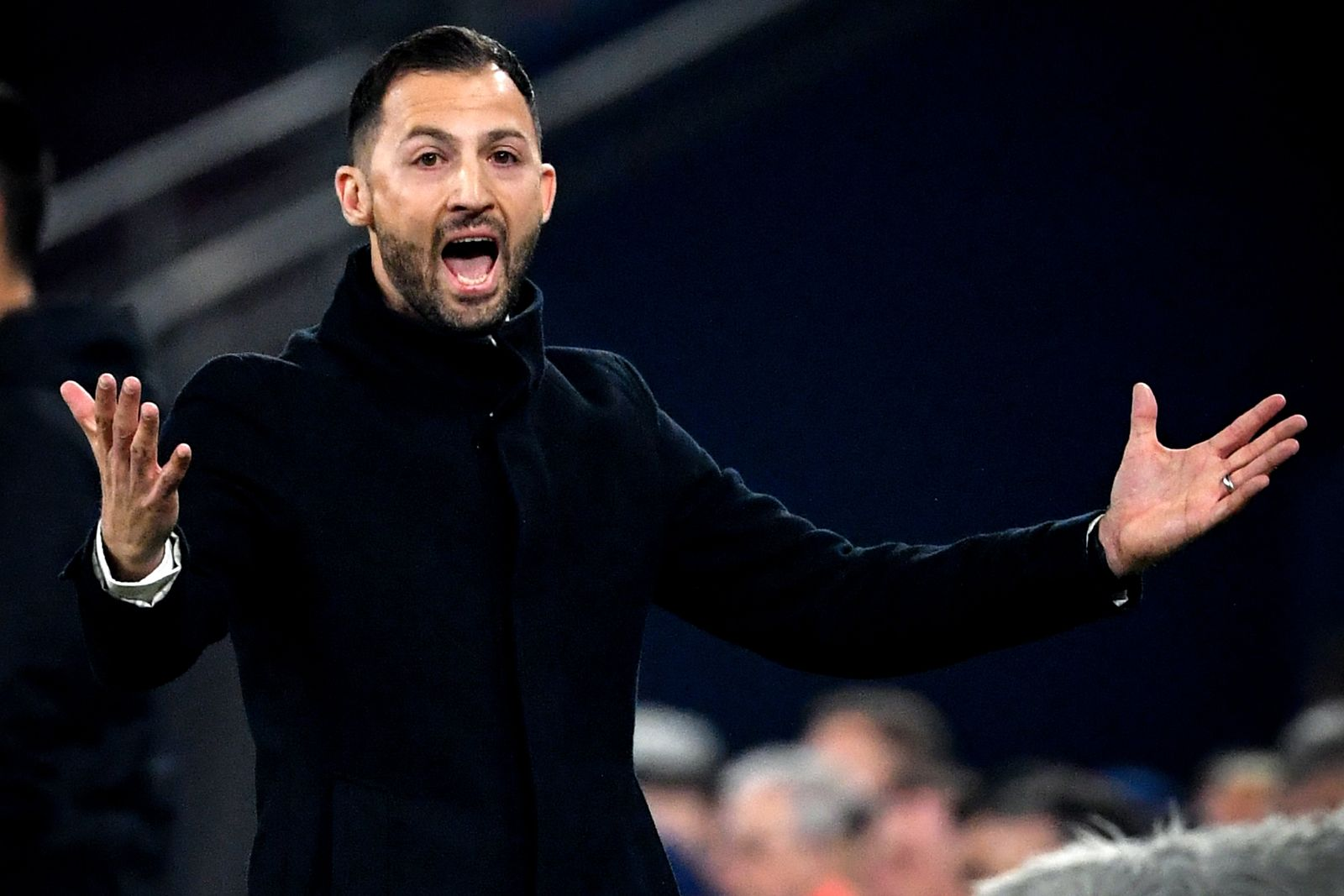 Schalke Domenico Tedesco