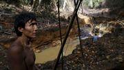 Die tödliche Gier nach dem Amazonasgold