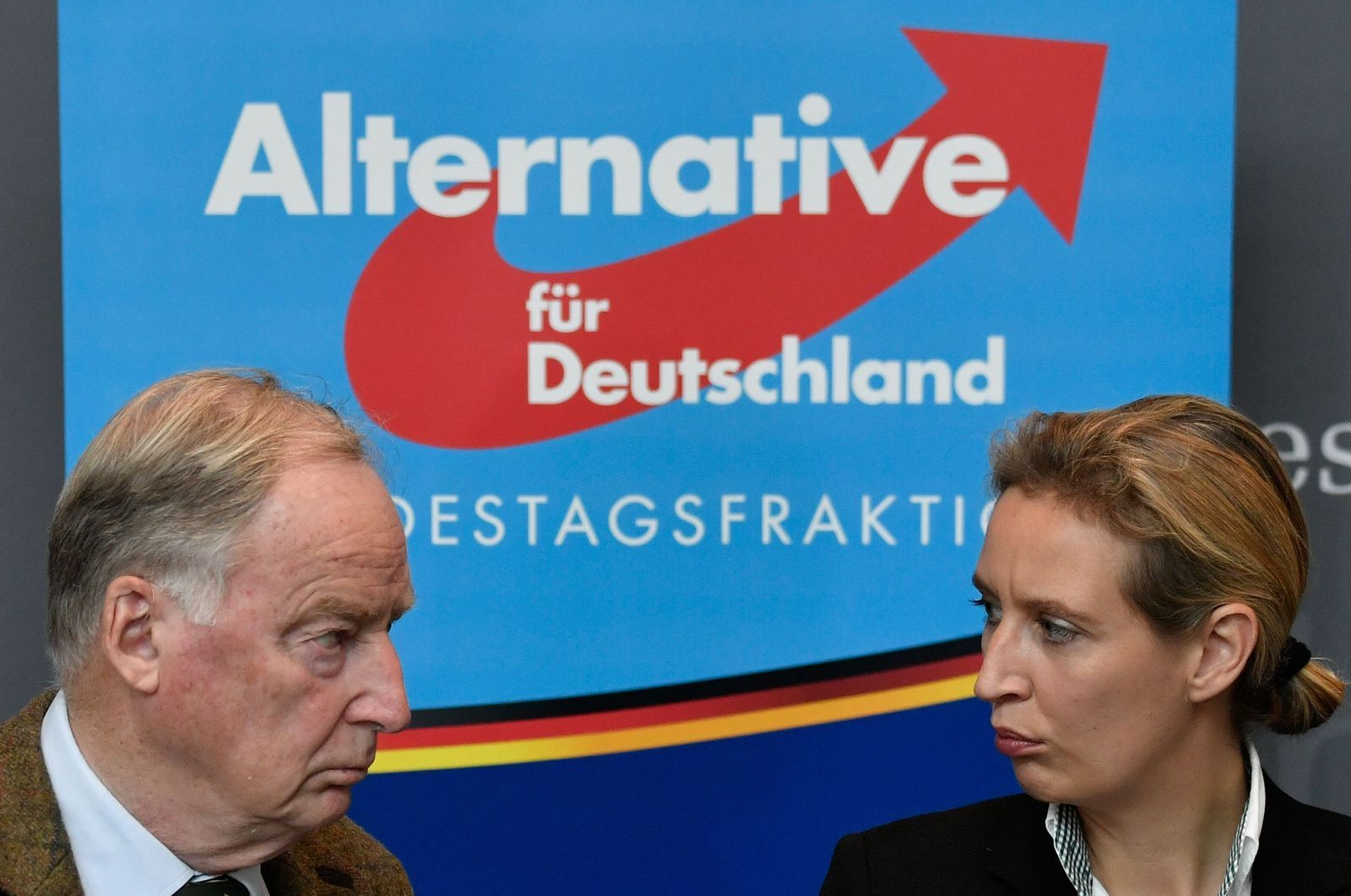 GERMANY-VOTE-AFD-PARLIAMENT
