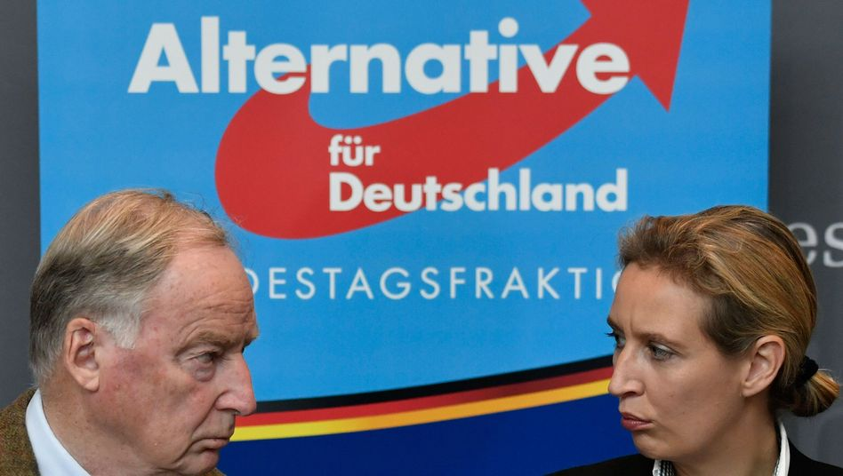 Alexander Gauland (l.) and Alice Weidel, floor leaders for the Alternative for Germany (AfD) in German parliament