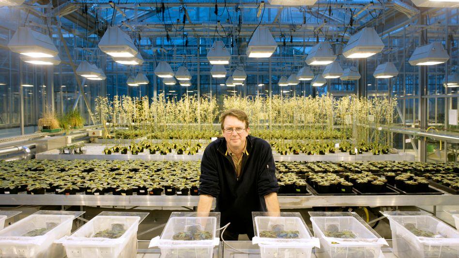Ökologe Baldwin 2006: Ein knallhartes Konkurrenzgeschäft